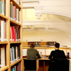 Two people working at a library desk, shown from behind and flanked by bookshelves.